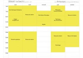 emploi du temps dsaa1 2011-2012