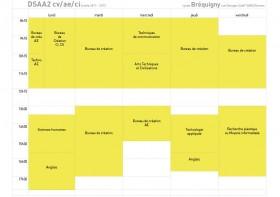 emploi du temps dsaa2 2011-2012