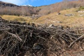 les matériaux locaux - design à la montagne