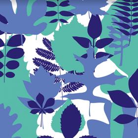 corentin-balcon-herbarium